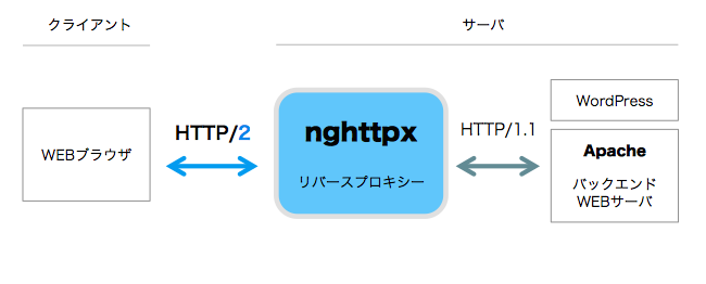 nghttpx-01